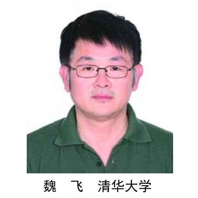 魏  飞  清华大学