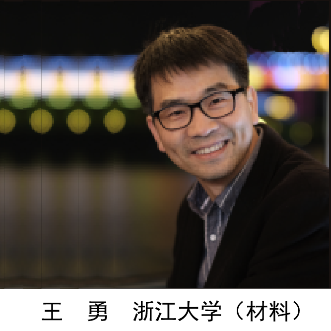 王  勇  浙江大学(材料)