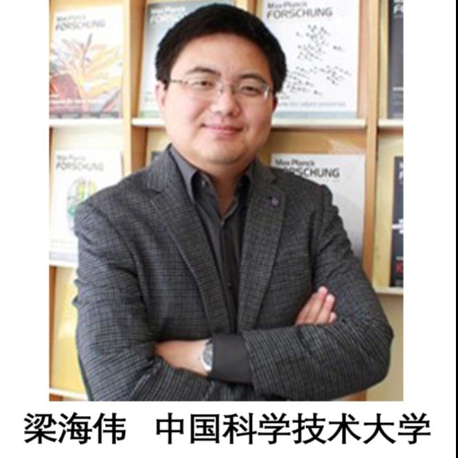 梁海伟 中国科学技术大学