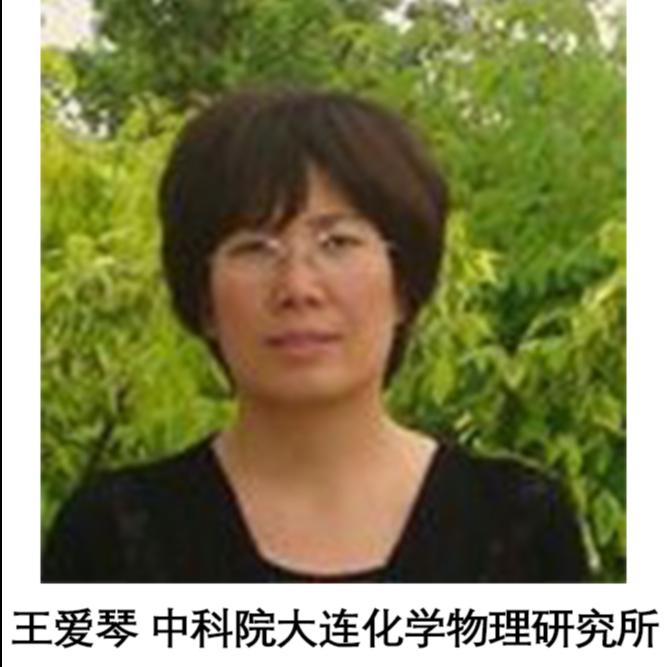 王爱琴 中国科学院大连化学物理研